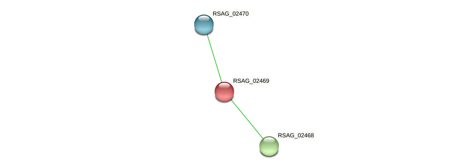 RSAG_02469 protein (Ruminococcus sp. 5139BFAA) - STRING interaction network