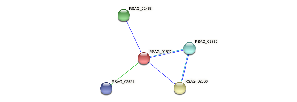 RSAG_02522 protein (Ruminococcus sp. 5139BFAA) - STRING interaction network