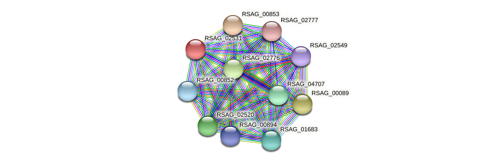 RSAG_02531 protein (Ruminococcus sp. 5139BFAA) - STRING interaction network