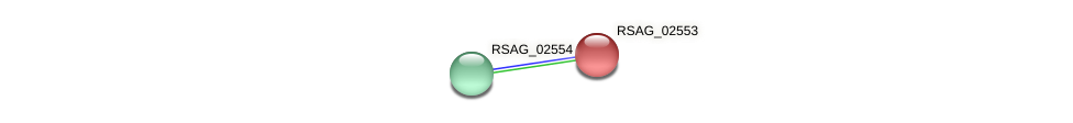 RSAG_02553 protein (Ruminococcus sp. 5139BFAA) - STRING interaction network