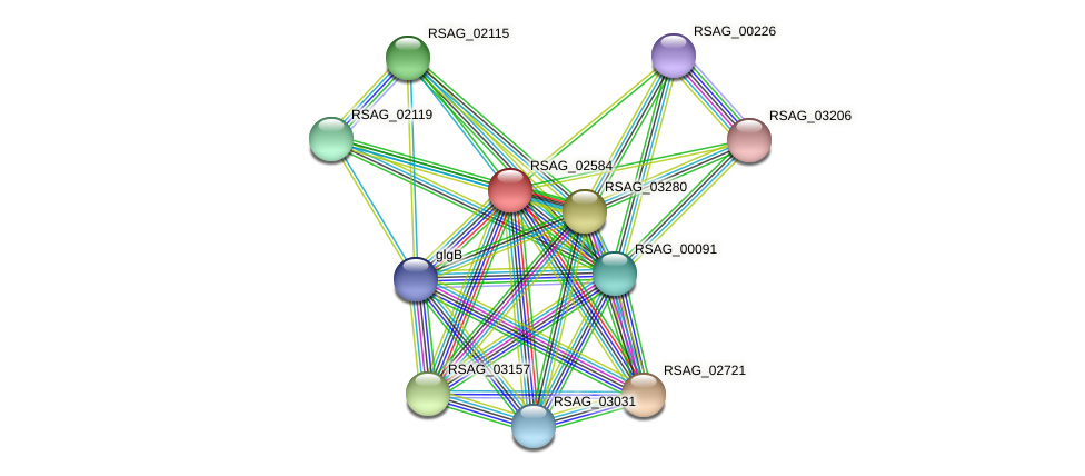 RSAG_02584 protein (Ruminococcus sp. 5139BFAA) - STRING interaction network