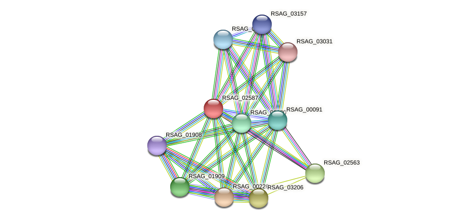 RSAG_02587 protein (Ruminococcus sp. 5139BFAA) - STRING interaction network