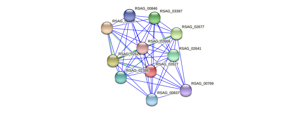 RSAG_02627 protein (Ruminococcus sp. 5139BFAA) - STRING interaction network