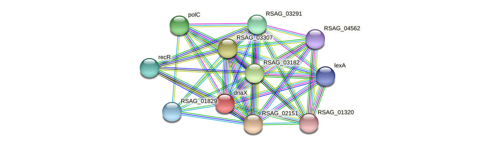 RSAG_02637 protein (Ruminococcus sp. 5139BFAA) - STRING interaction network