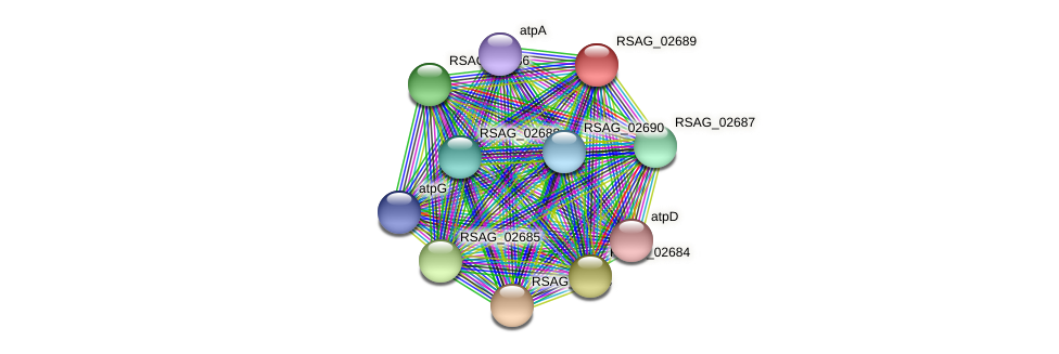 RSAG_02689 protein (Ruminococcus sp. 5139BFAA) - STRING interaction network