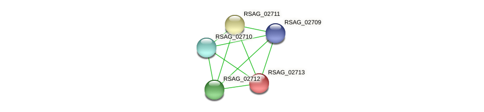 RSAG_02713 protein (Ruminococcus sp. 5139BFAA) - STRING interaction network