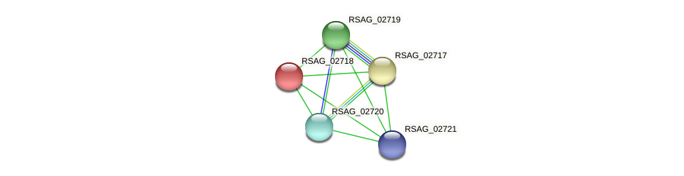 RSAG_02718 protein (Ruminococcus sp. 5139BFAA) - STRING interaction network