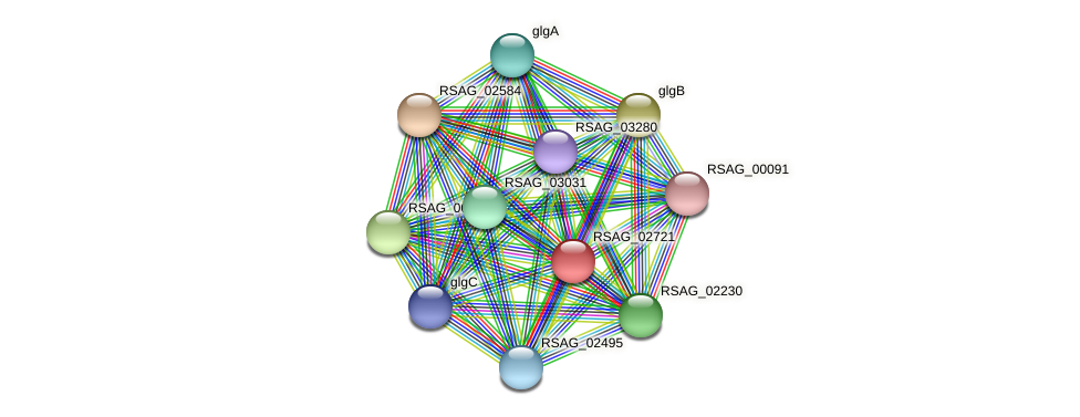 RSAG_02721 protein (Ruminococcus sp. 5139BFAA) - STRING interaction network