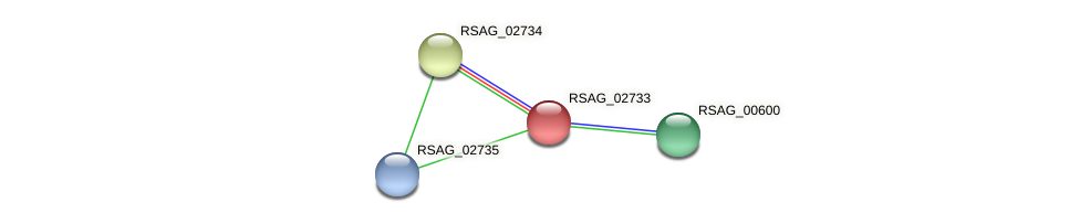 RSAG_02733 protein (Ruminococcus sp. 5139BFAA) - STRING interaction network