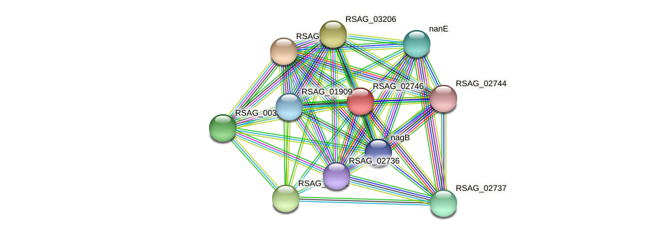 RSAG_02746 protein (Ruminococcus sp. 5139BFAA) - STRING interaction network