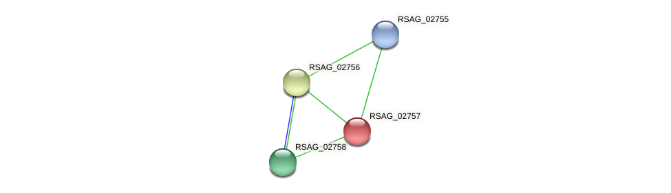 RSAG_02757 protein (Ruminococcus sp. 5139BFAA) - STRING interaction network