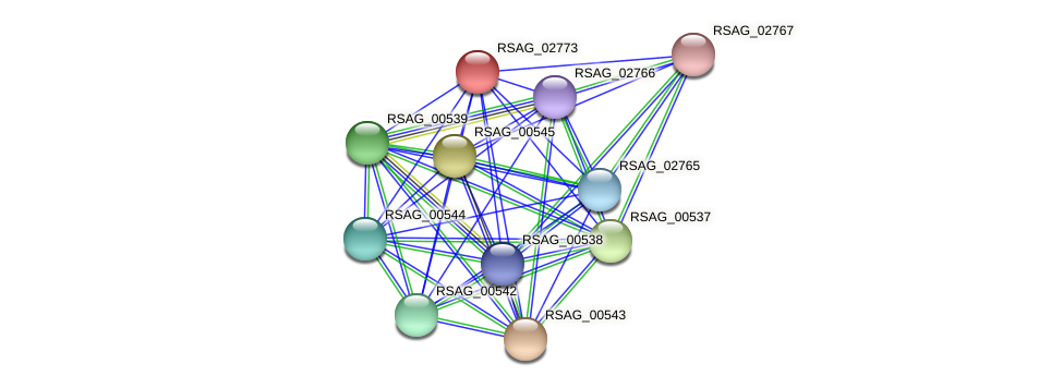 RSAG_02773 protein (Ruminococcus sp. 5139BFAA) - STRING interaction network