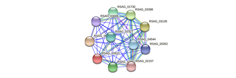 RSAG_02810 protein (Ruminococcus sp. 5139BFAA) - STRING interaction network