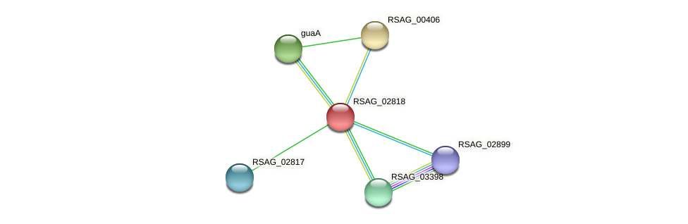 RSAG_02818 protein (Ruminococcus sp. 5139BFAA) - STRING interaction network