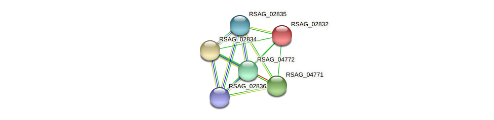 RSAG_02832 protein (Ruminococcus sp. 5139BFAA) - STRING interaction network
