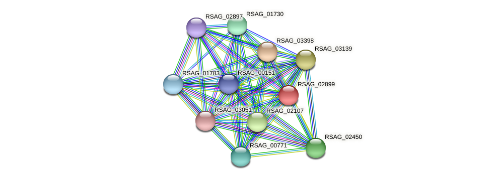 RSAG_02899 protein (Ruminococcus sp. 5139BFAA) - STRING interaction network