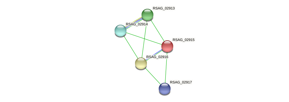 RSAG_02915 protein (Ruminococcus sp. 5139BFAA) - STRING interaction network