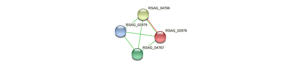 RSAG_02978 protein (Ruminococcus sp. 5139BFAA) - STRING interaction network