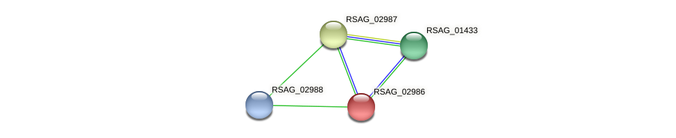 RSAG_02986 protein (Ruminococcus sp. 5139BFAA) - STRING interaction network