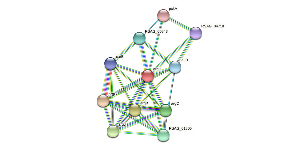 argH protein (Ruminococcus sp. 5139BFAA) - STRING interaction network