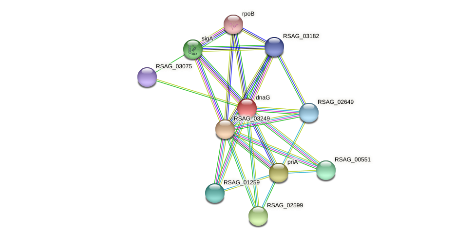 dnaG protein (Ruminococcus sp. 5139BFAA) - STRING interaction network