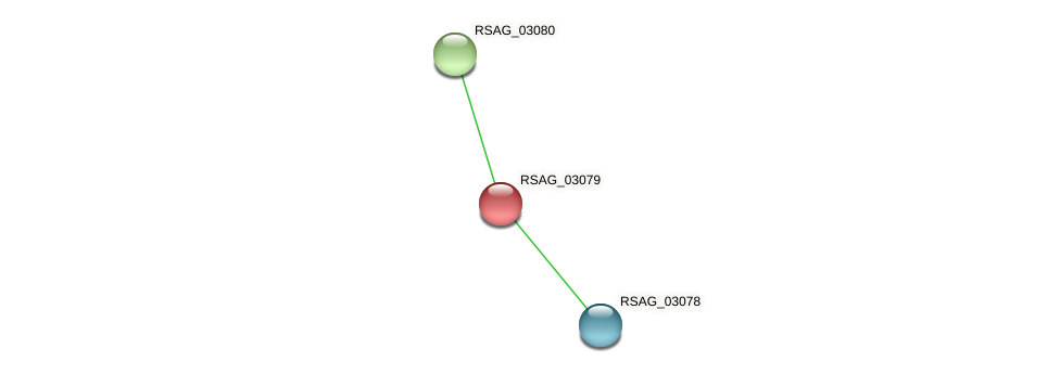 RSAG_03079 protein (Ruminococcus sp. 5139BFAA) - STRING interaction network
