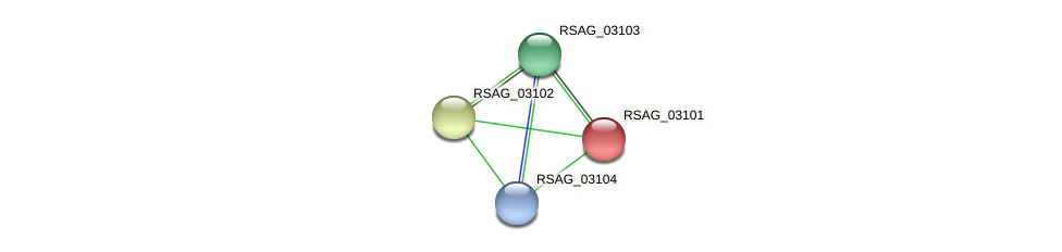 RSAG_03101 protein (Ruminococcus sp. 5139BFAA) - STRING interaction network