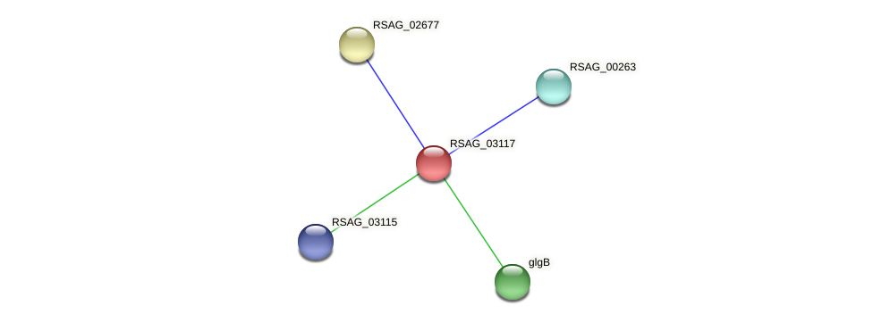 RSAG_03117 protein (Ruminococcus sp. 5139BFAA) - STRING interaction network