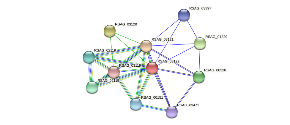 RSAG_03122 protein (Ruminococcus sp. 5139BFAA) - STRING interaction network