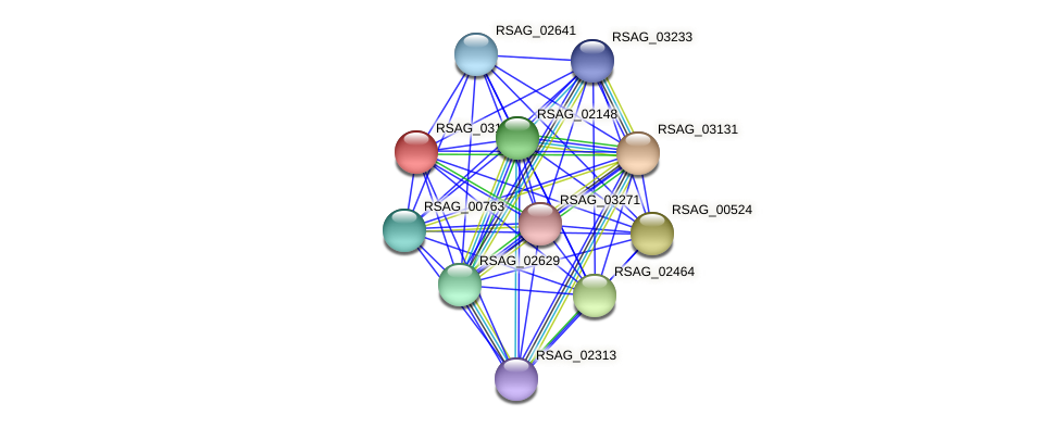 RSAG_03132 protein (Ruminococcus sp. 5139BFAA) - STRING interaction network