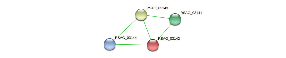 RSAG_03142 protein (Ruminococcus sp. 5139BFAA) - STRING interaction network