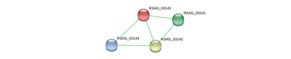 RSAG_03143 protein (Ruminococcus sp. 5139BFAA) - STRING interaction network