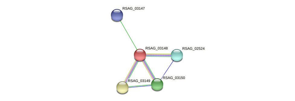 RSAG_03148 protein (Ruminococcus sp. 5139BFAA) - STRING interaction network