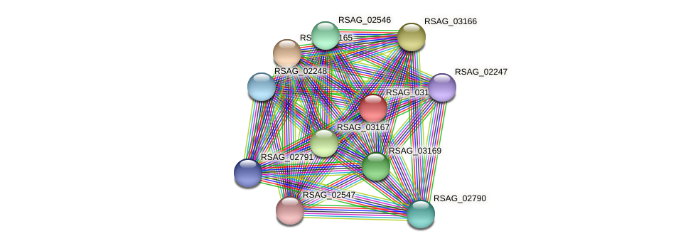 RSAG_03168 protein (Ruminococcus sp. 5139BFAA) - STRING interaction network