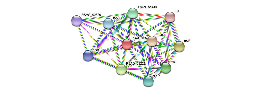 RSAG_03244 protein (Ruminococcus sp. 5139BFAA) - STRING interaction network