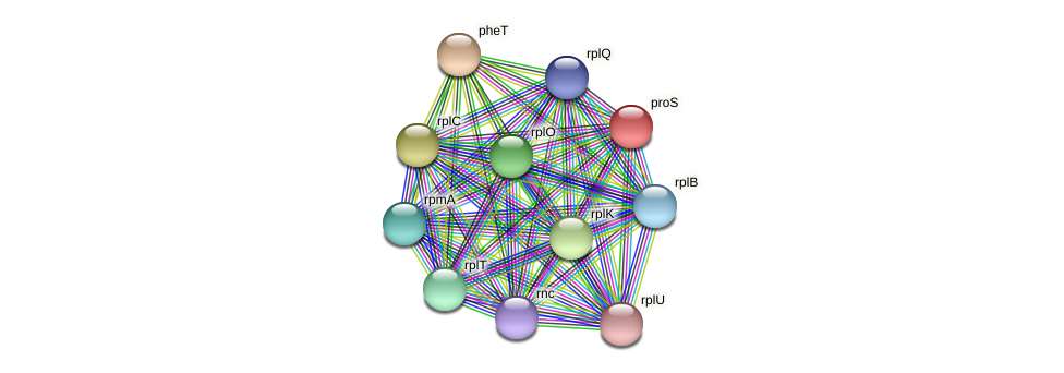 proS protein (Ruminococcus sp. 5139BFAA) - STRING interaction network