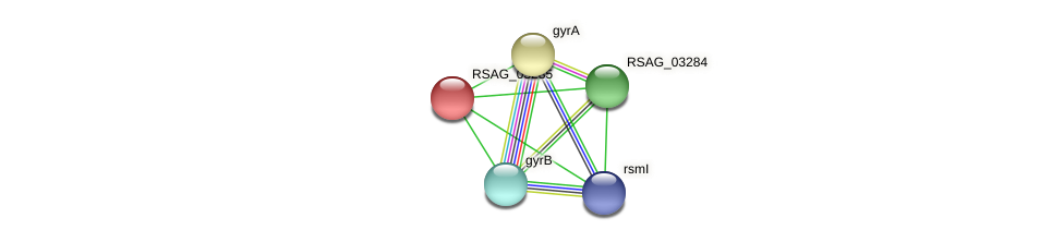 RSAG_03285 protein (Ruminococcus sp. 5139BFAA) - STRING interaction network