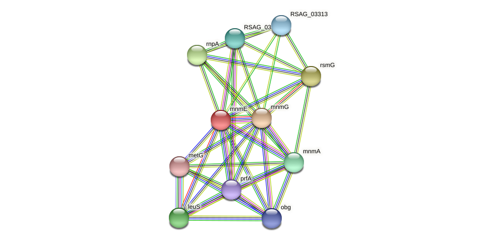 mnmE protein (Ruminococcus sp. 5139BFAA) - STRING interaction network