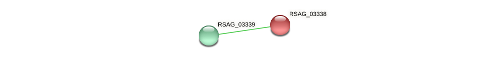 RSAG_03338 protein (Ruminococcus sp. 5139BFAA) - STRING interaction network