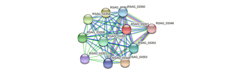 RSAG_03357 protein (Ruminococcus sp. 5139BFAA) - STRING interaction network