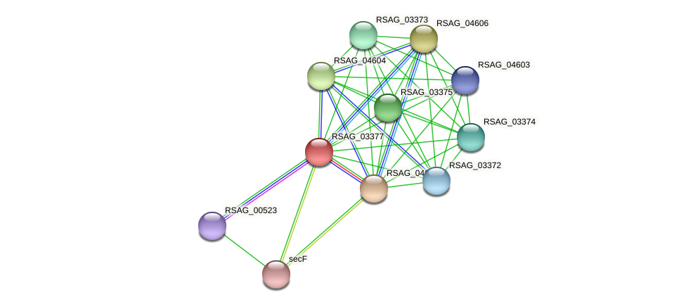 RSAG_03377 protein (Ruminococcus sp. 5139BFAA) - STRING interaction network