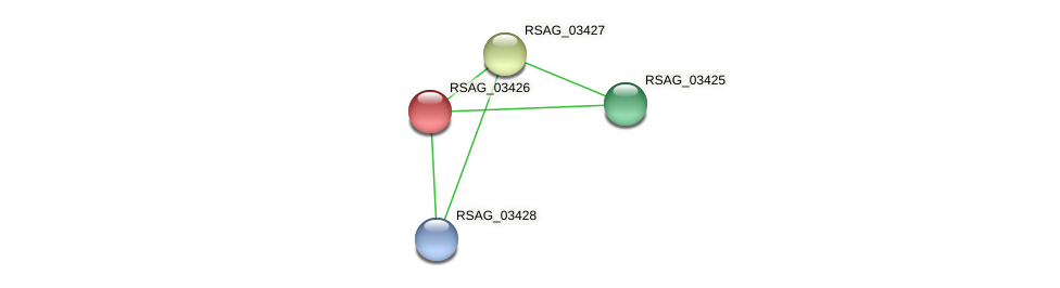 RSAG_03426 protein (Ruminococcus sp. 5139BFAA) - STRING interaction network