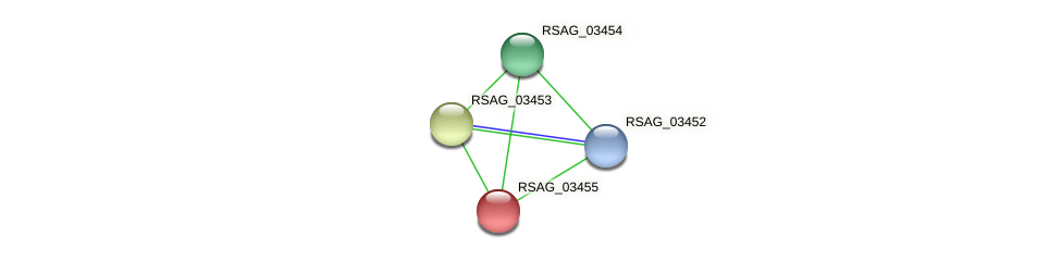 RSAG_03455 protein (Ruminococcus sp. 5139BFAA) - STRING interaction network