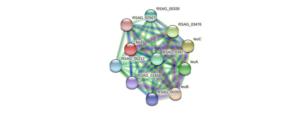 RSAG_03475 protein (Ruminococcus sp. 5139BFAA) - STRING interaction network
