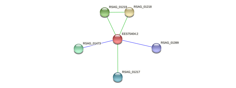 RSAG_03499 protein (Ruminococcus sp. 5139BFAA) - STRING interaction network