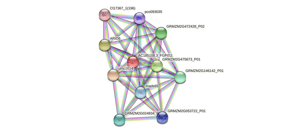 AC185108.3_FGP011 protein (Zea mays) - STRING interaction network
