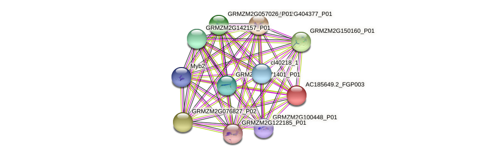 AC185649.2_FGP003 protein (Zea mays) - STRING interaction network