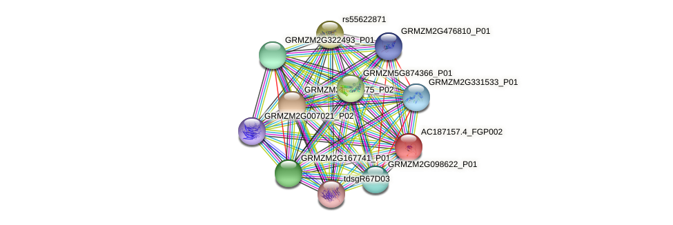 AC187157.4_FGP002 protein (Zea mays) - STRING interaction network