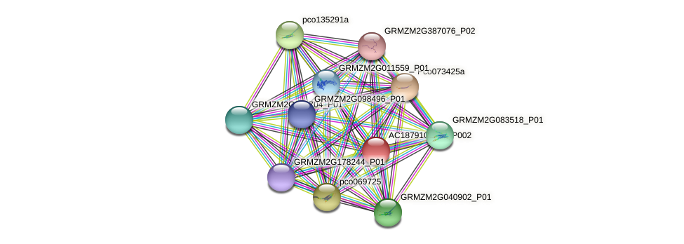 AC187910.5_FGP002 protein (Zea mays) - STRING interaction network