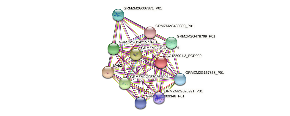 AC188001.3_FGP009 protein (Zea mays) - STRING interaction network